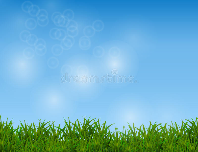 在闪耀的蓝天背景的绿草 库存例证