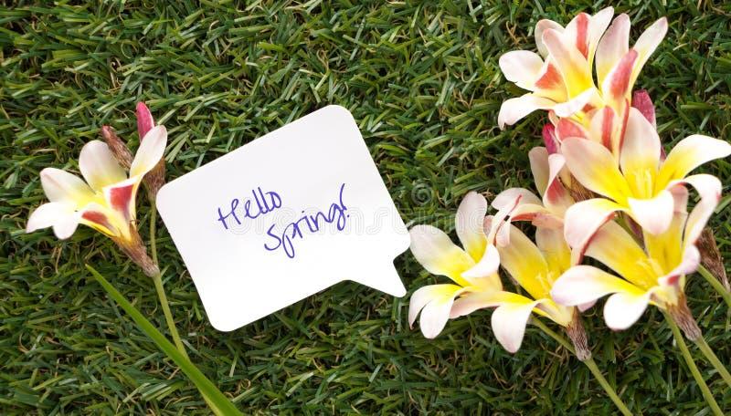 在闲谈泡影的形状的笔记,与词你好春天!并且花 免版税库存照片
