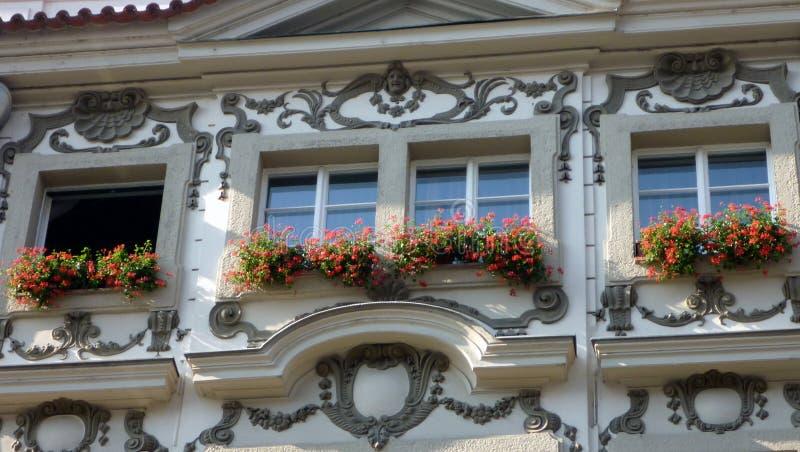 在阳台,布拉格的红色花 免版税库存照片