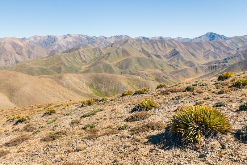 在阴间谷,南阿尔卑斯山,新西兰附近的贫瘠小山 免版税库存图片