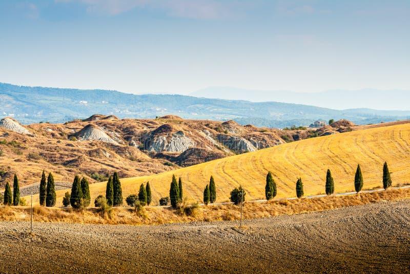 在阿夏诺附近的乡下在克利特Senesi,托斯卡纳,意大利 免版税库存照片