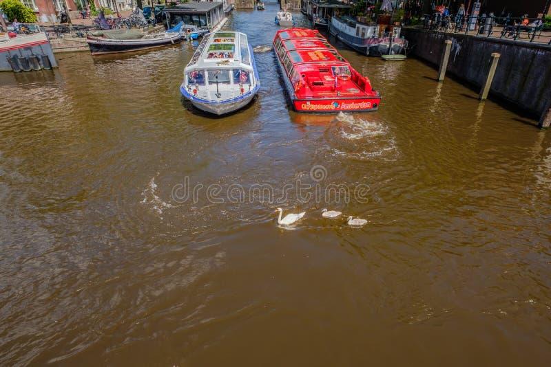 在阿姆斯特丹运河的繁忙的水路运输 图库摄影