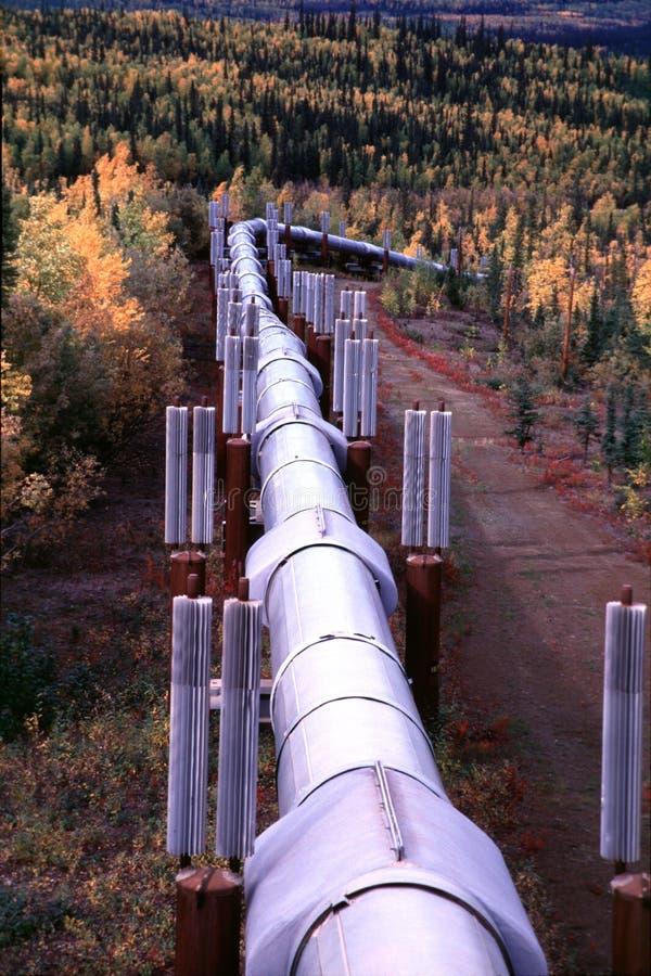 在阿拉斯加的输油管之上 库存图片