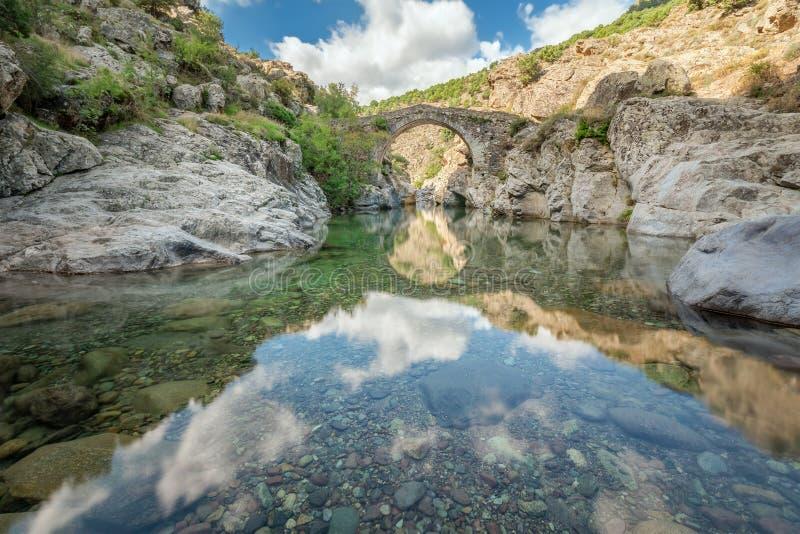 在阿斯科科西嘉附近的老热那亚的桥梁 免版税库存图片