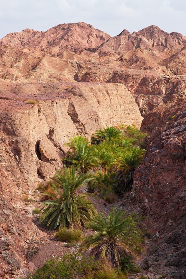 在阿曼离开看法在山的沙漠视图 库存照片