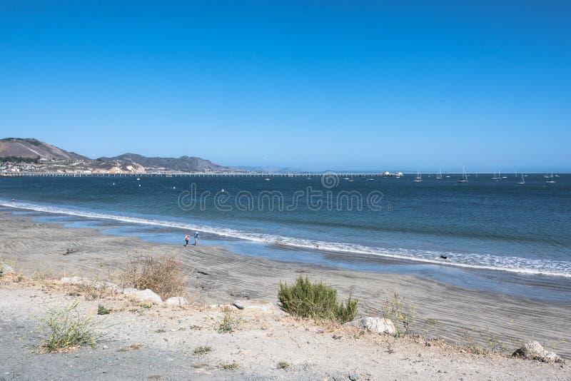 在阿维拉海滩,加利福尼亚的沙子海滩 免版税库存图片