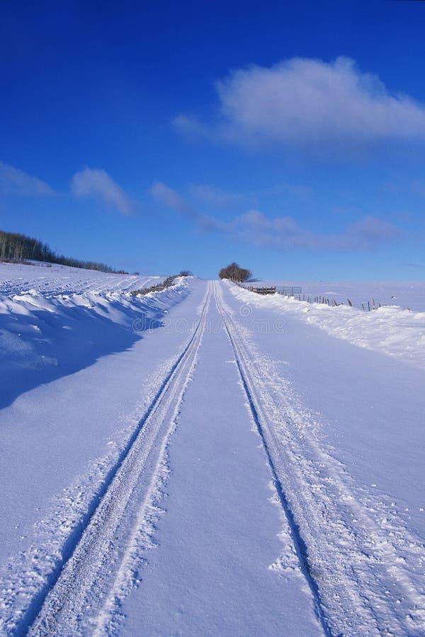 在降雪以后的前条美元路,加州 库存照片