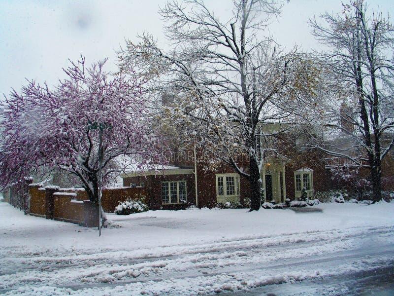 在降雪期间的传统家在有树开花的早期的春天和泥泞的路和落的雪可看见在图片 库存照片