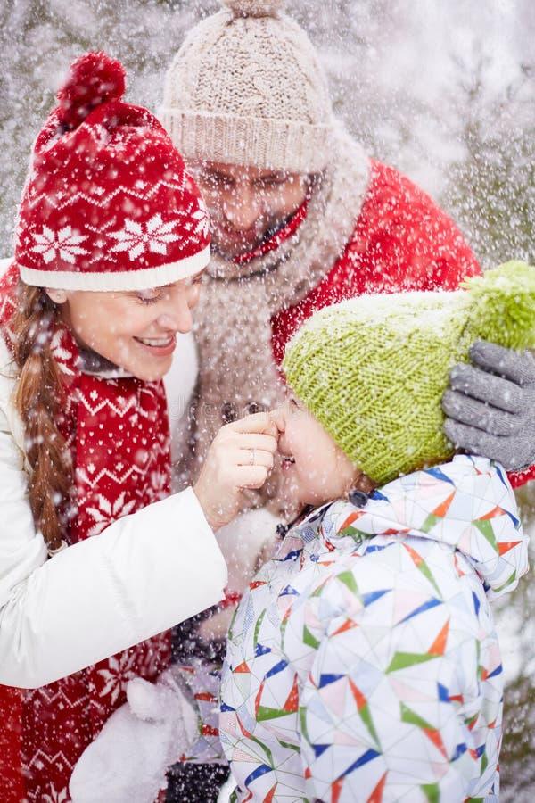 在降雪的乐趣 免版税库存照片