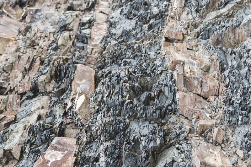 在陡峭的层状岩石 库存图片