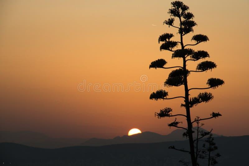 在雅典的日落在希腊 库存照片