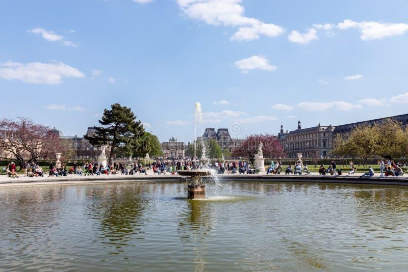 在雅尔丹des Tuileries -巴黎,法国的春天 库存照片