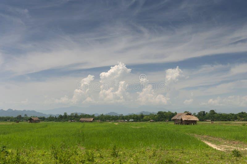在雅鲁藏布江,阿萨姆邦,印度附近的阿萨姆的议院 库存图片