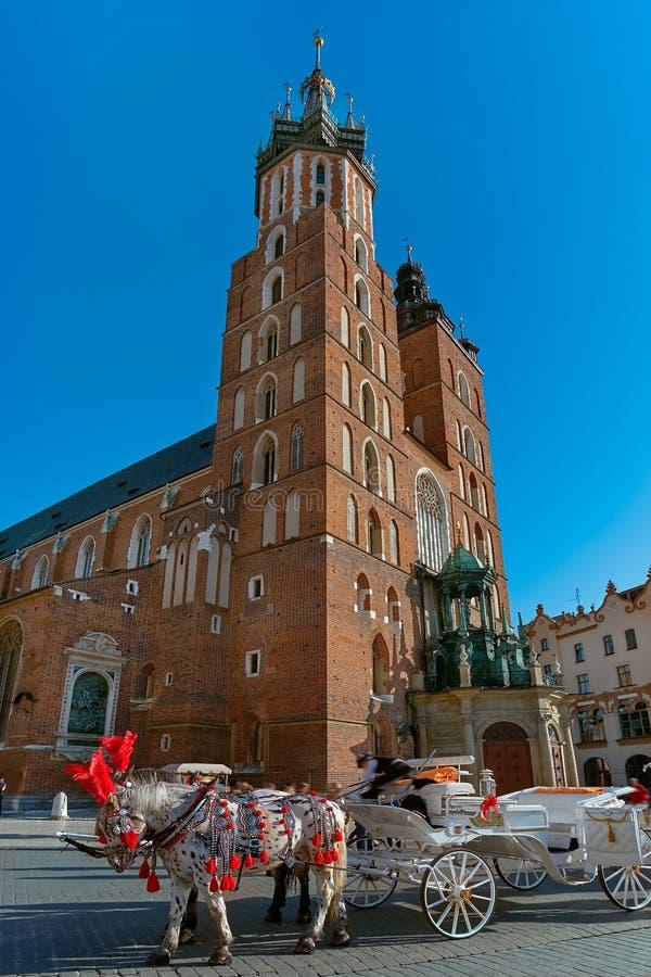 在集市广场和圣玛丽的大教堂的马支架在克拉科夫,夏天太阳光的波兰 免版税库存图片