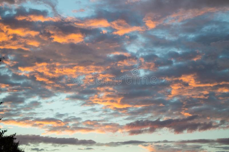 在雨以后的五颜六色的夏天日落与剧烈的蓝色和桃红色云彩,天气概念,季节性具体,拷贝空间 库存照片