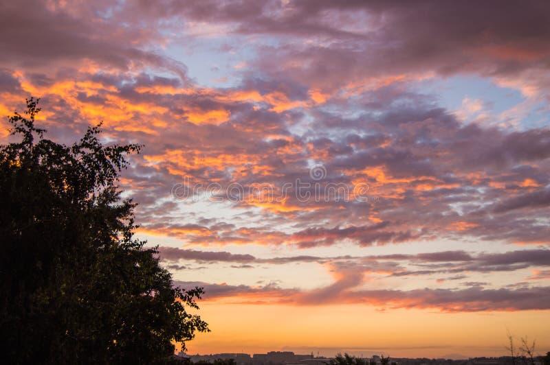 在雨以后的五颜六色的夏天日落与剧烈的蓝色和桃红色云彩,天气概念,季节性具体,拷贝空间 免版税图库摄影