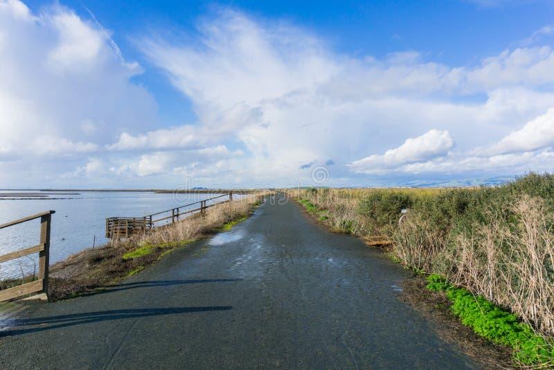 在雨以后的湿和泥泞的堤坝,唐爱德华兹野生生物保护区,南部旧金山湾,Alviso,圣荷西,加利福尼亚 库存照片