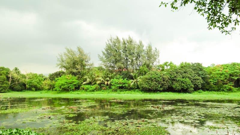 在雨前的天空和湖视图 免版税库存图片