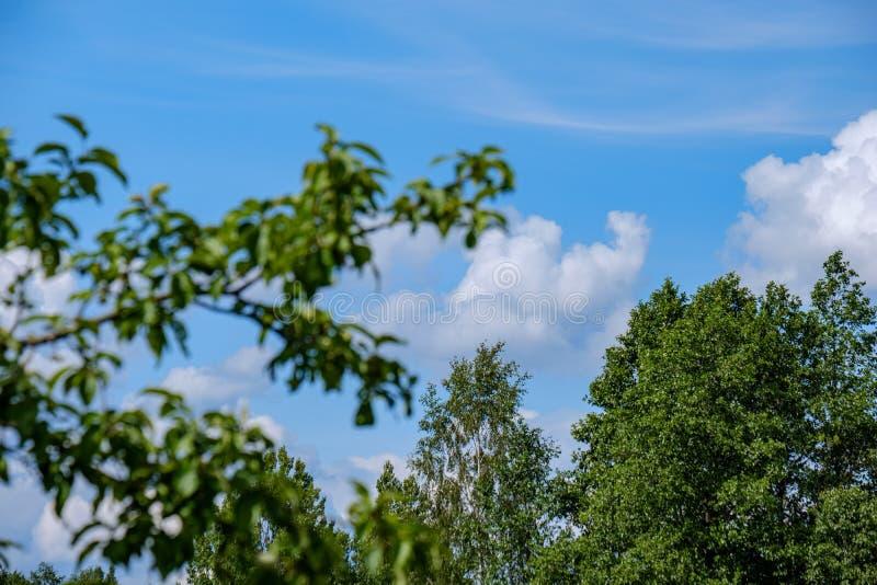 在雨前的蓝天 免版税库存图片