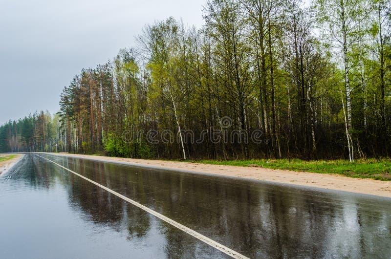 在雨以后的路 免版税库存图片