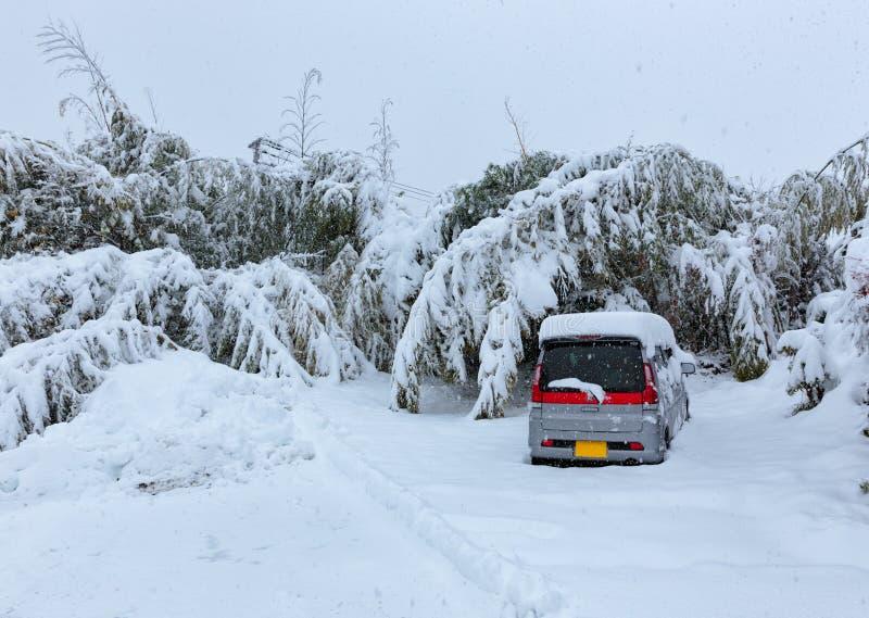 在雪下的一辆汽车 库存照片