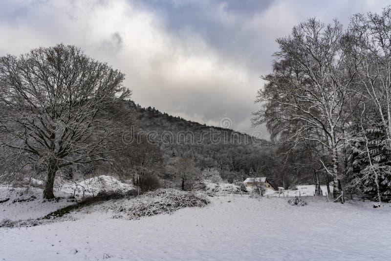 在雪下的法国村庄风景 库存照片