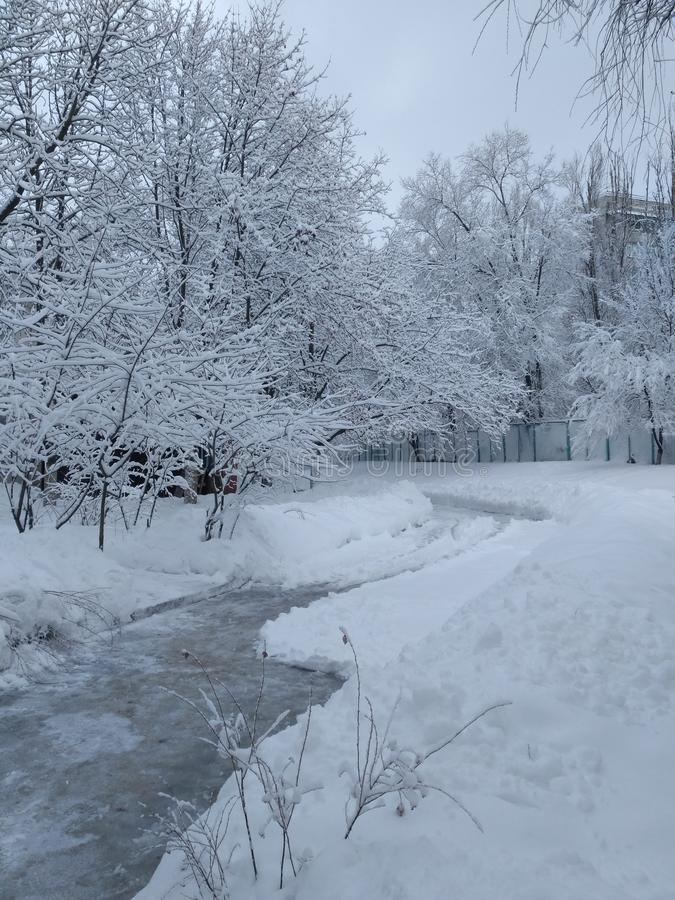 在雪中的被铲起的道路 免版税库存照片