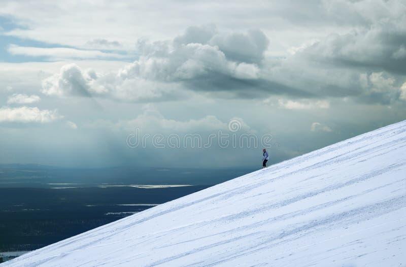 在雪和天空之间 库存图片