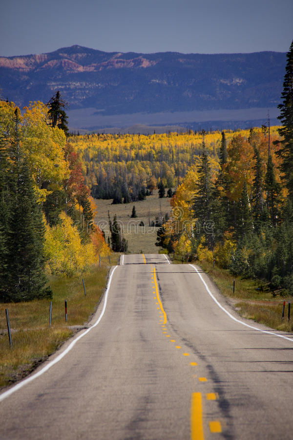 在雪松断裂的秋天颜色 库存图片