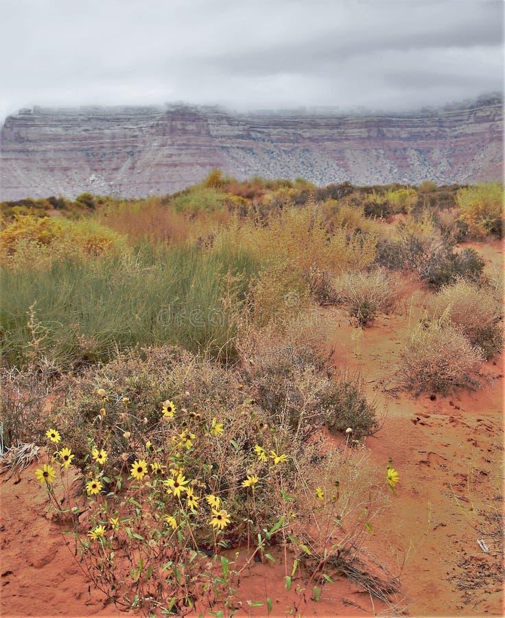 在雪松Mesa的云彩在墨西哥帽附近 库存图片