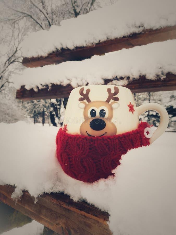在雪的一个杯子 库存图片
