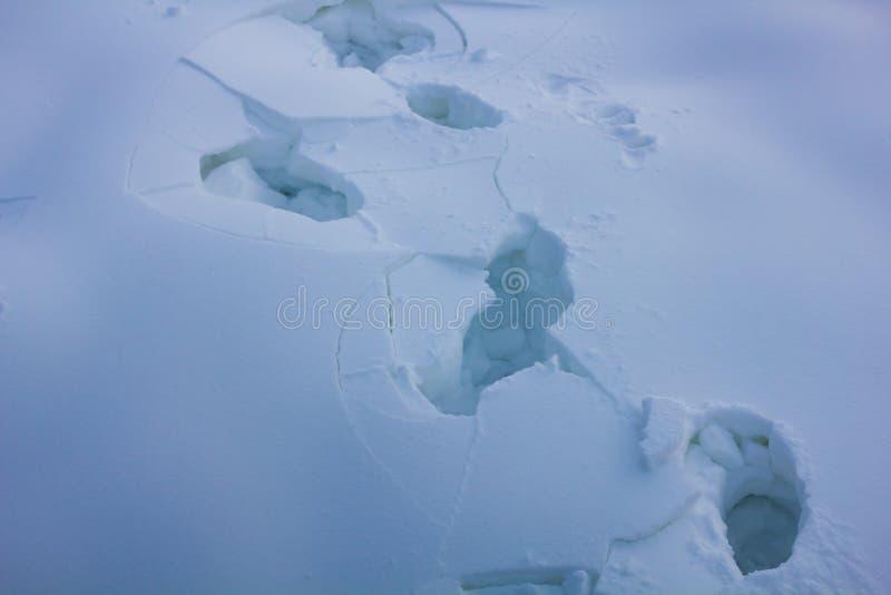 在雪的人的脚印 免版税库存照片