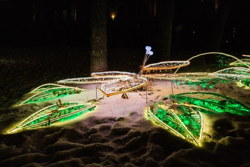 在雪的圣诞灯装饰在冬天夜假日照亮了街道 免版税库存照片