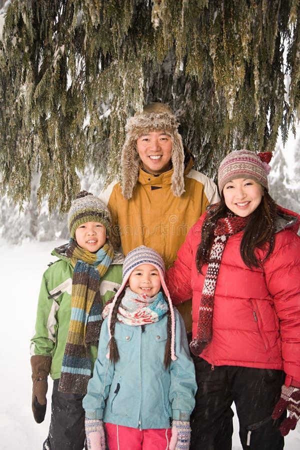 在雪的家庭 免版税库存照片