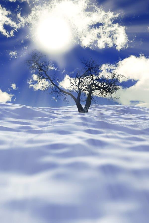在雪的干燥结构树 库存例证
