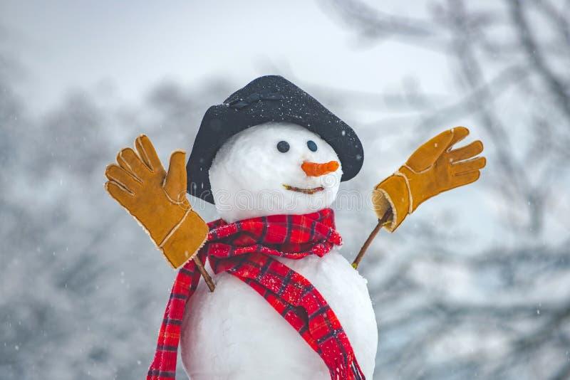 在雪的愉快的滑稽的雪人 冬天帽子的雪人 室外的雪人 滑稽的雪人 在帽子和围巾的逗人喜爱的雪人 免版税库存照片