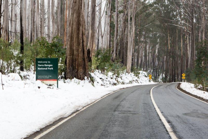 在雪的有风澳大利亚路 库存照片