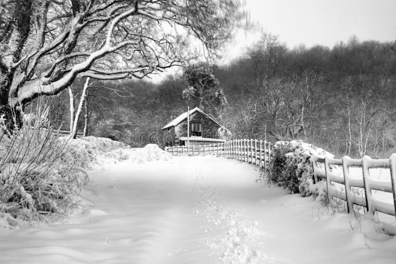 在雪的村庄 免版税库存照片