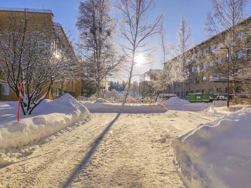 在雪的树阴影与优美的风景外部 库存图片