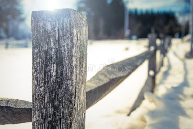 在雪的老木篱芭 库存照片