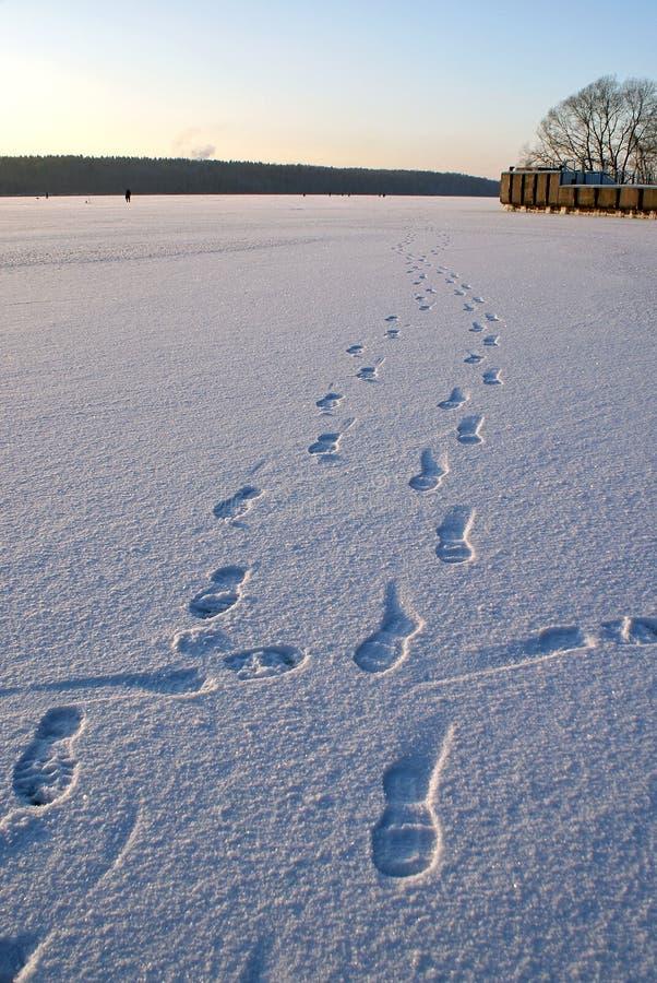 在雪的脚印 图库摄影