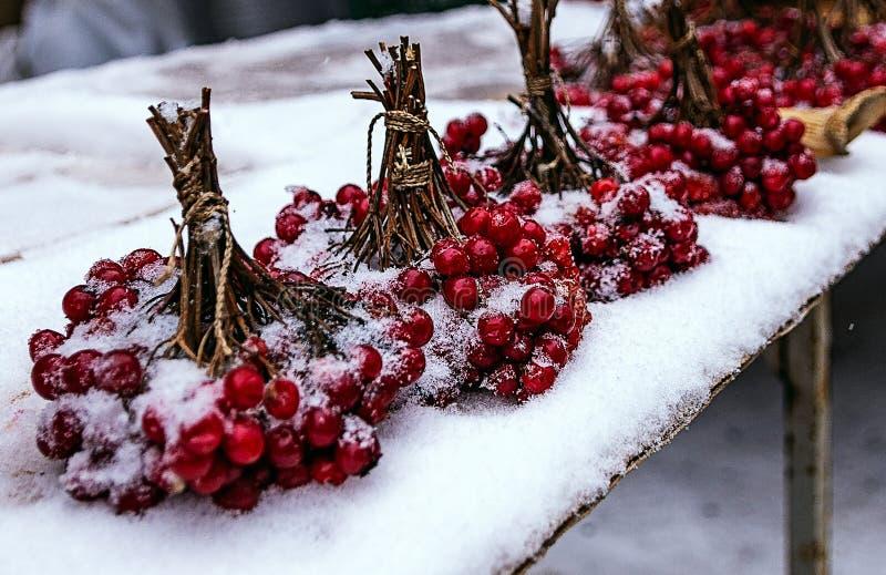 在雪的莓果 免版税库存照片