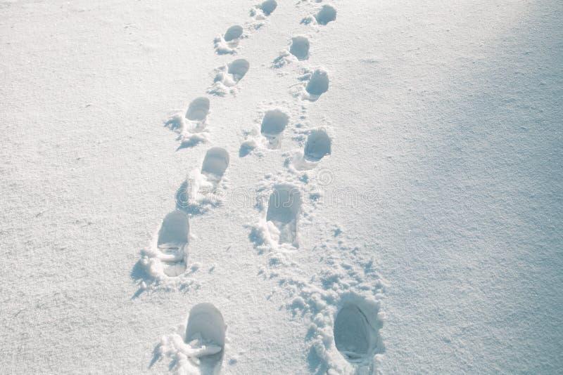 在雪的鞋子印刷品 免版税图库摄影