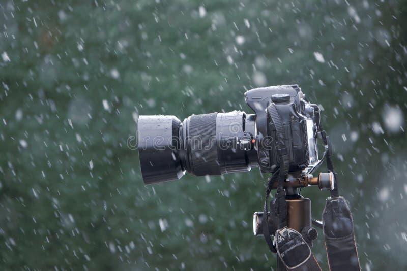 在雪的DSLR 库存图片