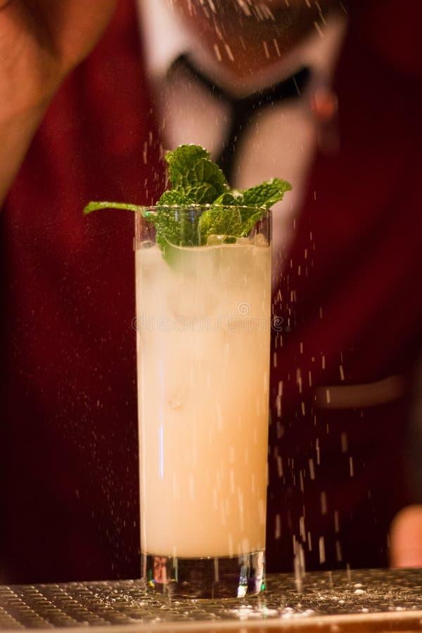 在雪盖的刷新的鸡尾酒用领带的侍酒者 库存图片