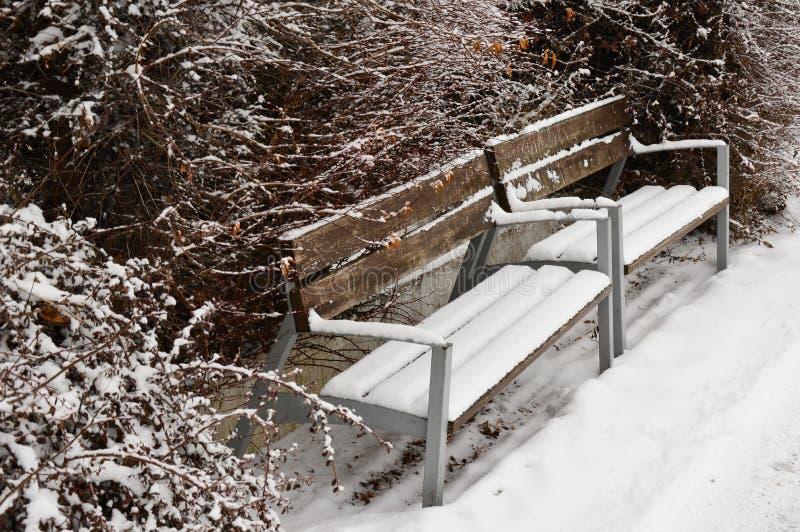 在雪盖的双长凳在河沿的冬天季节期间在Piestany,斯洛伐克 图库摄影