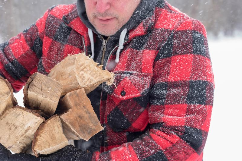 在雪盖的羊毛夹克的人带来木柴 库存图片