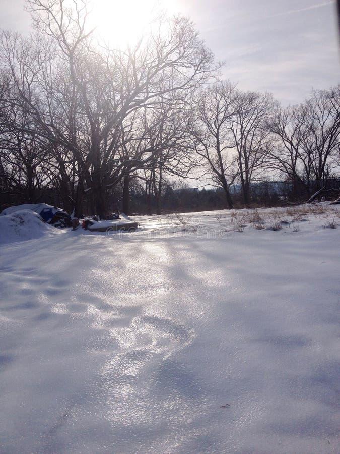 在雪顶部的冰 免版税图库摄影