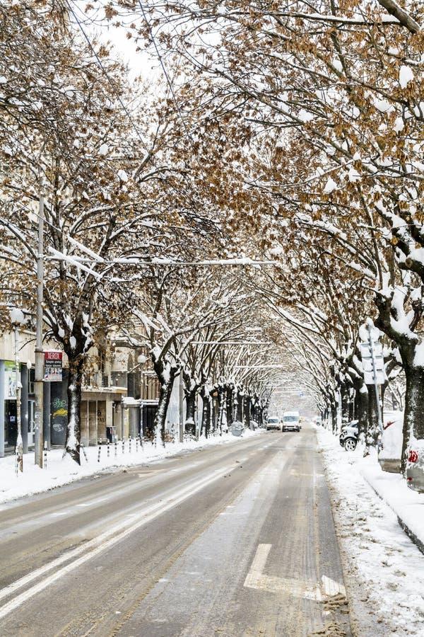 在雪风暴的都市街道 库存照片
