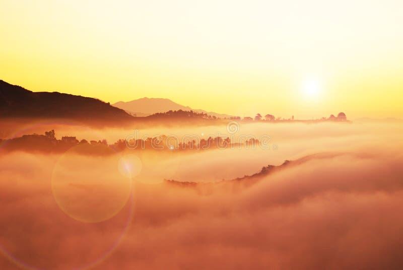 在雾之上 免版税库存照片